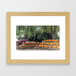 Pumpkin Harvest. Framed Art Print