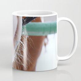 Frozen Horse Nose close up on winter background. Coffee Mug