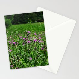Legacy of the Highlands Stationery Cards