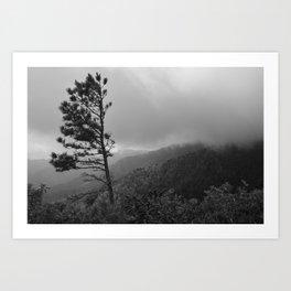 Survival on Brushy Mountain (Black & White) Art Print