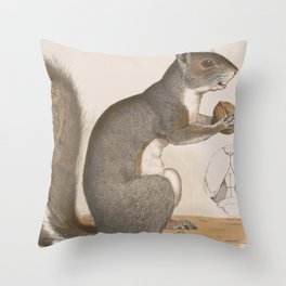 Vintage Illustration of a Grey Squirrel Throw Pillow