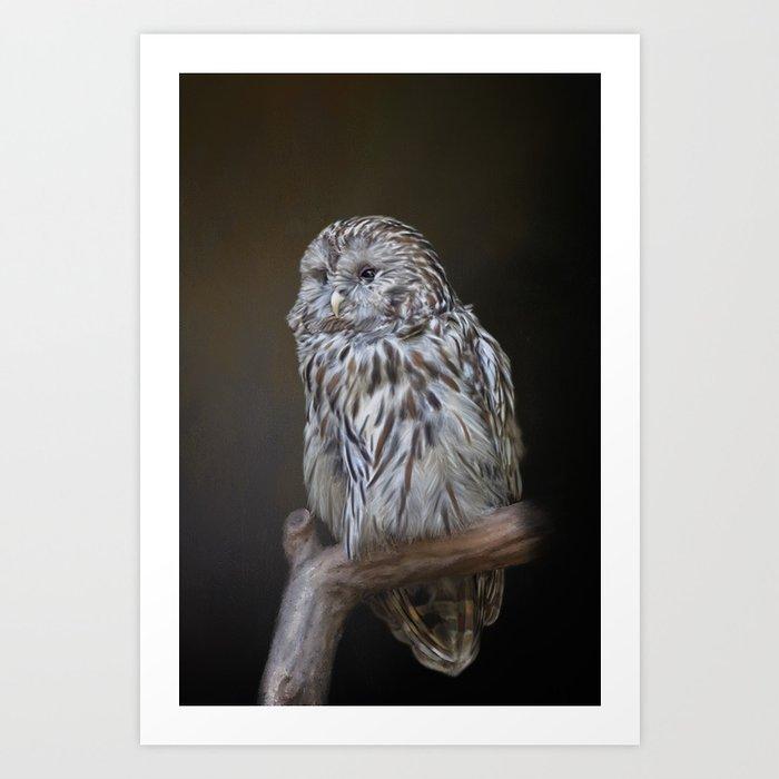 Lovely cute owl Art Print