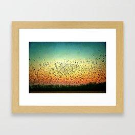 a scene from the birds Framed Art Print