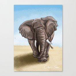 The Majestic Elephant Canvas Print