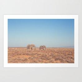 Elephants in South Africa Art Print