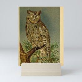 Eurasian Scops Owl8 Mini Art Print