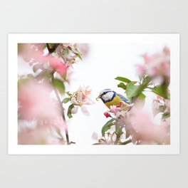 Little bird in beautiful flowering tree  worm in mouth Art Print