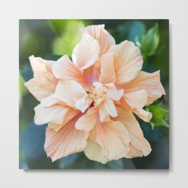 Jane Cowl Tropical Hibiscus Metal Print