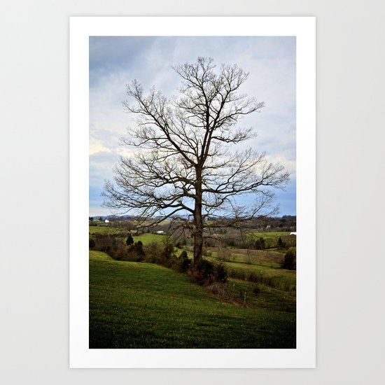 From Limestone, With Love Art Print