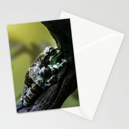 Frog Far From Home Stationery Cards