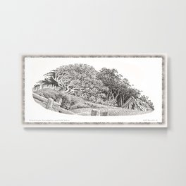 WINDSWEPT EUCALYPTUS TREE AND OLD BARN ON THE MENDOCINO COAST Metal Print