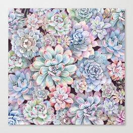 succulent garden 3 Canvas Print