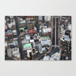 Vue aérienne Canvas Print