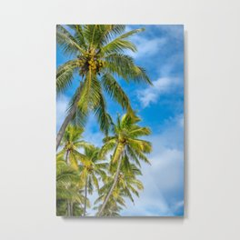 Coconut Palm Trees against the blue sky at Isle of Pines in New Caledonia. Metal Print