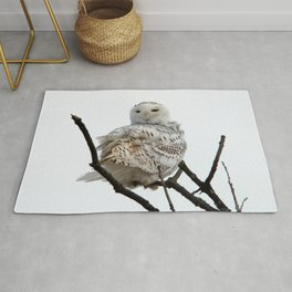 Twist and Shout (Snowy Owl) Rug