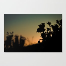 Spring of the Wasteland Canvas Print