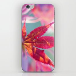 Acer palmatum Wonderland iPhone Skin