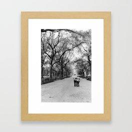 Central Park Walks Framed Art Print