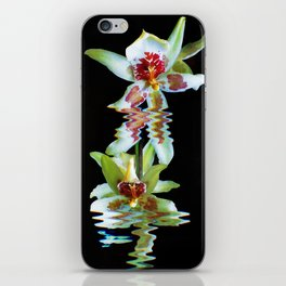 Green flowered Cymbidium iPhone Skin