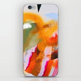 Hudson iPhone Skin