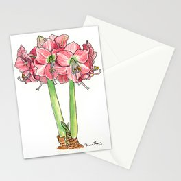 Amaryllis in Bloom Stationery Cards