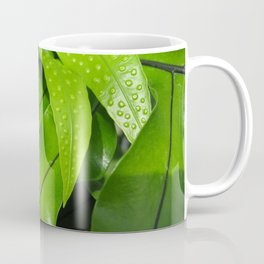 From the Conservatory #42 Coffee Mug