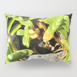 Watercolor Forb, Opposite Leaved Succulent 01, Borgarnes, Iceland Pillow Sham
