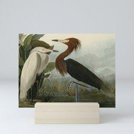 256 Purple Heron Mini Art Print
