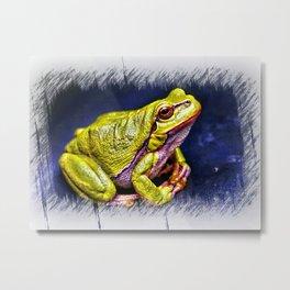 The InFocus Happy Frog Collection IX Metal Print