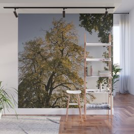 Perfect autumn-sunset colors Wall Mural