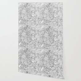 Vintage Map of Brussels (1905) BW Wallpaper