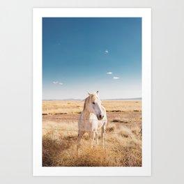West Texas Wild IV Art Print