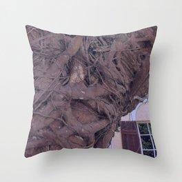 Florida Strangler Fig Throw Pillow