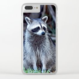 Bandit II Clear iPhone Case