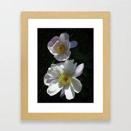 Blushing Peonies Framed Art Print