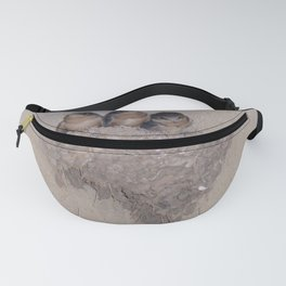 Three Baby Swallows are Poised to Leave the Nest Fanny Pack