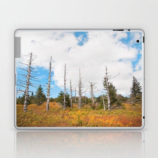 Trees in Mt. Rogers, Virginia Laptop & iPad Skin