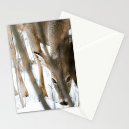 Keeping Watch Stationery Cards