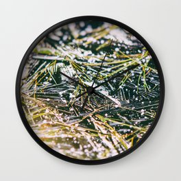 Snow herbs Wall Clock