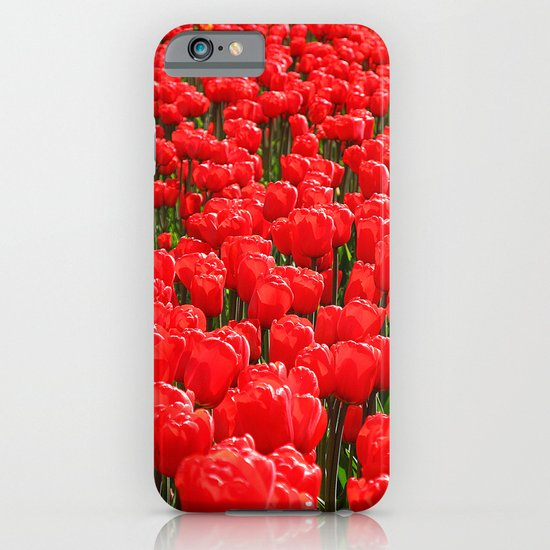 Red tulips iPhone & iPod Case