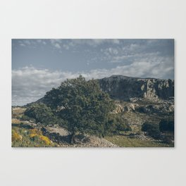 Under the Grey Sky Canvas Print
