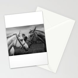 Horses of Instagram II Stationery Cards
