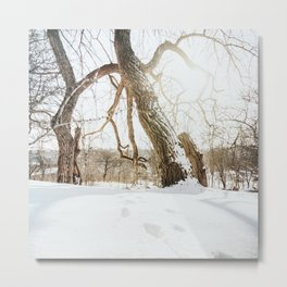 Atmospheric Winter Landscape Photo | Nature In Winter Photography | Footsteps In Snow With Backlight Metal Print