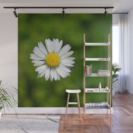 Flowers Izby Garden 2 Wall Mural