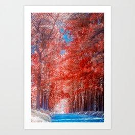 Autumn forest in mist path Art Print