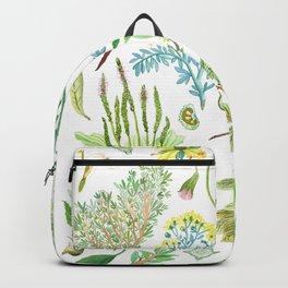 plantas medicinales Backpack