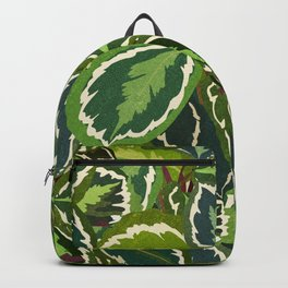 Calathea Prayer Plant Pattern Backpack