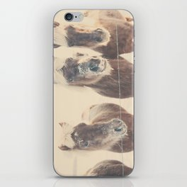 """""""here's looking at you kid ... """" iPhone Skin"""