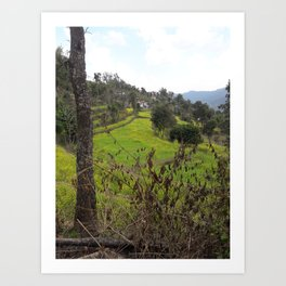 A View of Step-Farming - Pokhara, Nepal Art Print