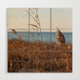 MD'Youville Wood Wall Art